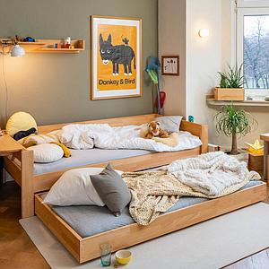 Bettkasten Gästebett-Auszug auf Rollen mit Rollrost DESTYLE Debreuyn Buche massiv-natur geölt